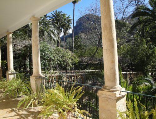 Visita a los Jardines de Alfabia (Mallorca)